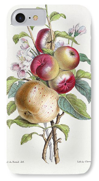 Apple Tree IPhone Case by JB Pointel du Portail