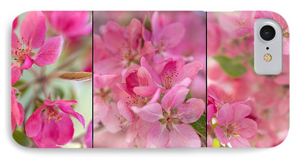 Apple Tree Triptych 2 IPhone Case