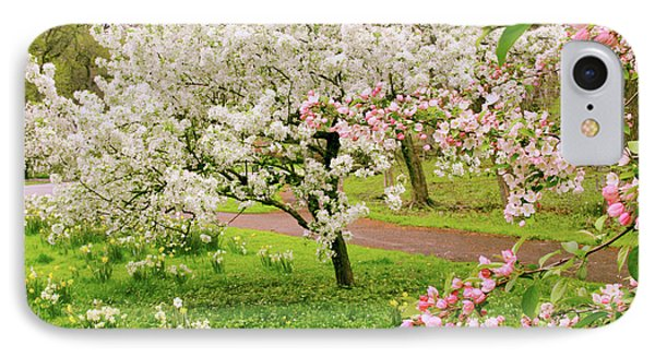 Apple Trees In Bloom IPhone Case by Jessica Jenney