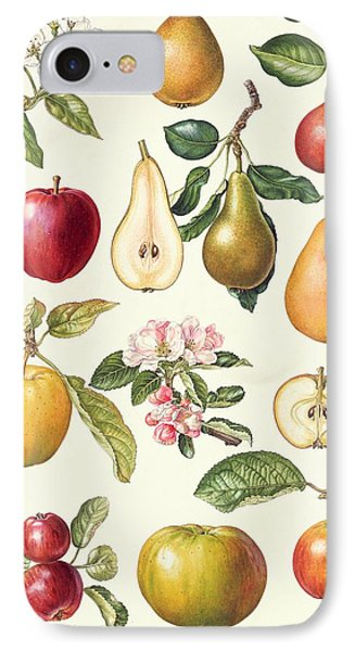 Apples And Pears IPhone Case