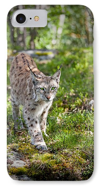 Approaching Lynx IPhone Case