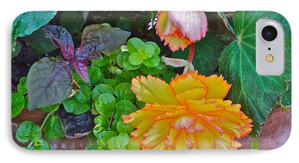 Apricot Begonia 3 IPhone Case