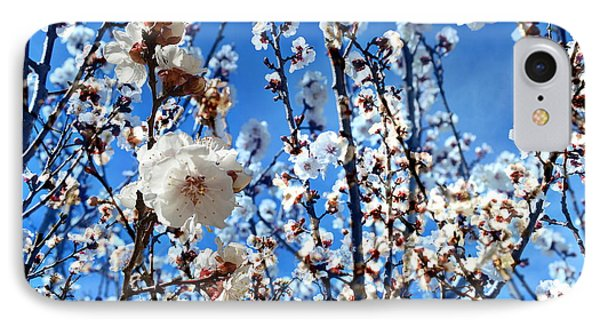 IPhone Case featuring the photograph Apricot Blossoms by Glenn McCarthy Art and Photography