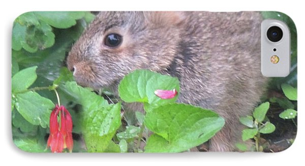 IPhone Case featuring the photograph April Rabbit And Columbine by Peg Toliver