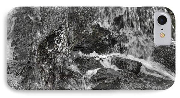 Arboretum Waterfall Bw IPhone Case by Richard J Cassato