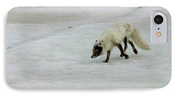 Arctic Fox On Ice Phone Case by Anthony Jones