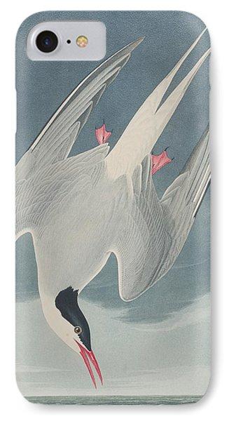 Arctic Tern IPhone Case by John James Audubon
