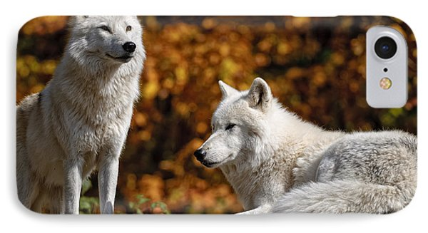 IPhone Case featuring the photograph Arctic Wolves On Rocks by Michael Cummings