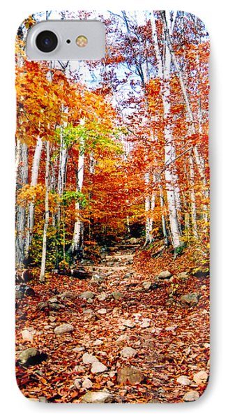 Arethusa Falls Trail Phone Case by Greg Fortier