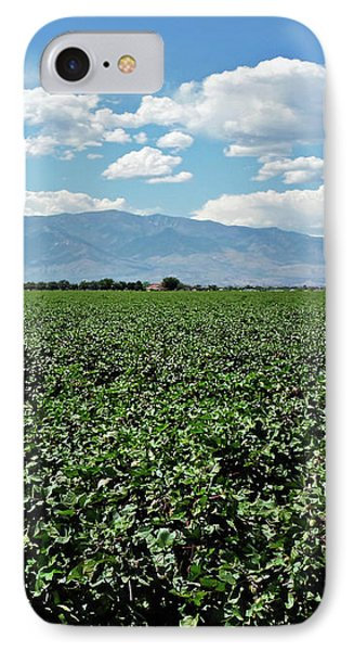 Arizona Cotton Field Phone Case by Methune Hively
