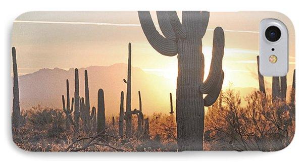Arizona Saguaro Cactus Sunset Desert Landscape IPhone Case by Andrea Hazel Ihlefeld