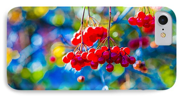 IPhone Case featuring the photograph Arrowwood Berries Abstract by Alexander Senin