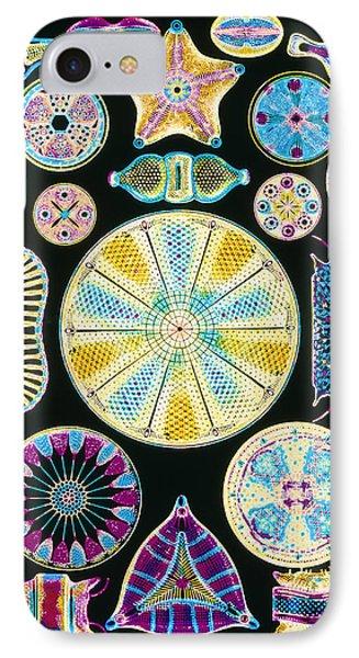 Art Of Diatom Algae (from Ernst Haeckel) Phone Case by Mehau Kulyk
