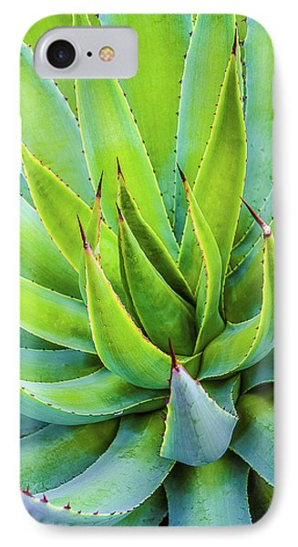 IPhone Case featuring the photograph Artichoke Agave Desert Plant by Julie Palencia