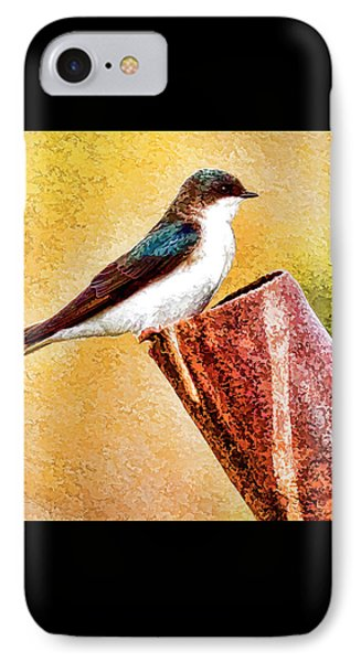 Male Tree Swallow No. 2 IPhone Case