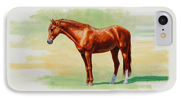 Roasting Chestnut - Morgan Horse IPhone Case