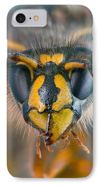 IPhone Case featuring the photograph Wasp Portrait by Alexey Kljatov