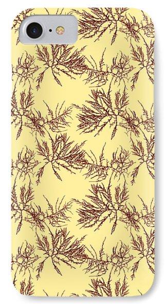 Ocean Seaweed Plant Art Laurencia Tenuissima IPhone Case by Christina Rollo