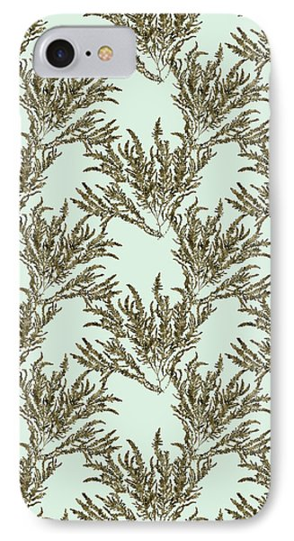 Ocean Seaweed Plant Art Ptilota Sericea Square IPhone Case by Christina Rollo