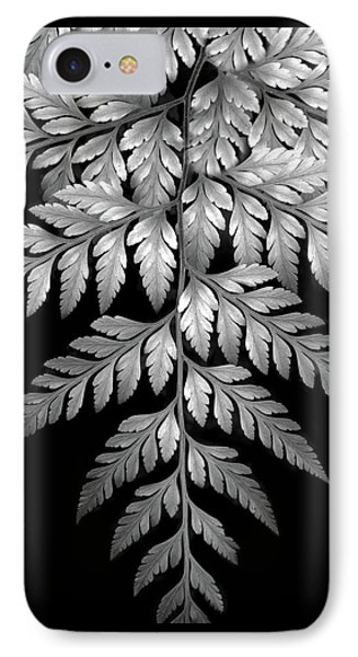 Filigree Fern II IPhone Case by Jessica Jenney