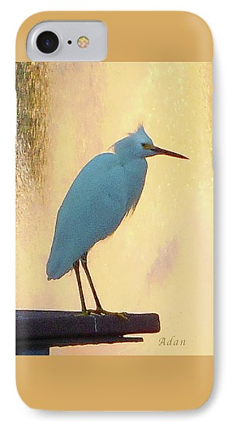 Birds And Fun At Butler Park Austin - Birds 3 Detail Macro Phone Case by Felipe Adan Lerma