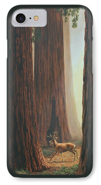 Sequoia Trees - Among The Giants IPhone Case by Crista Forest