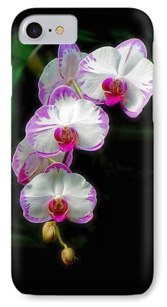 Cascading Orchid Beauties Phone Case by Sue Melvin