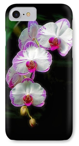 Cascading Orchid Beauties IPhone Case