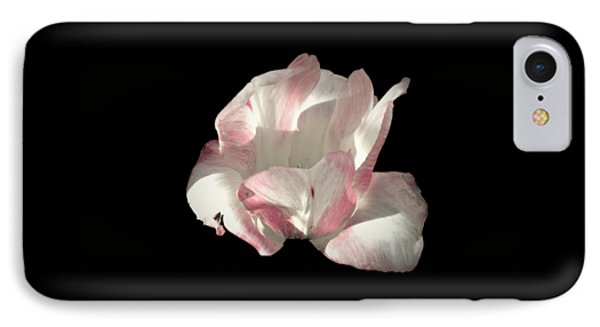 Pretty In Pink IPhone Case by Photographic Arts And Design Studio