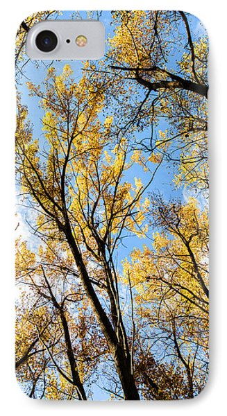 Looking Up IPhone Case by Bill Kesler