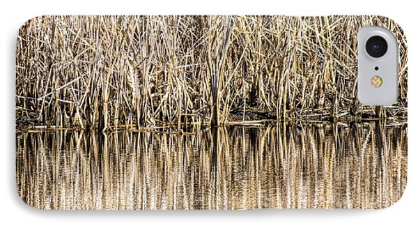 Golden Reed Reflection IPhone Case by Bill Kesler