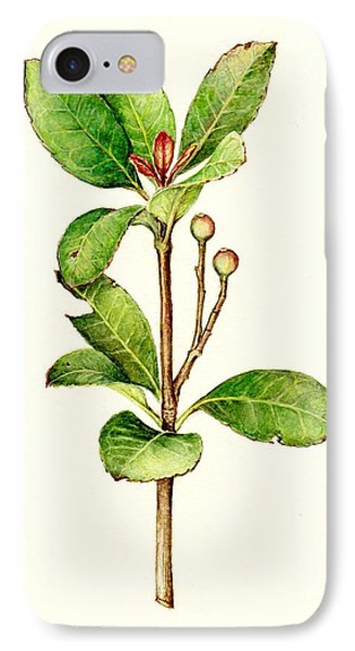 IPhone Case featuring the painting As The Twig Is Bent The Tree Inclines. by Heidi Kriel