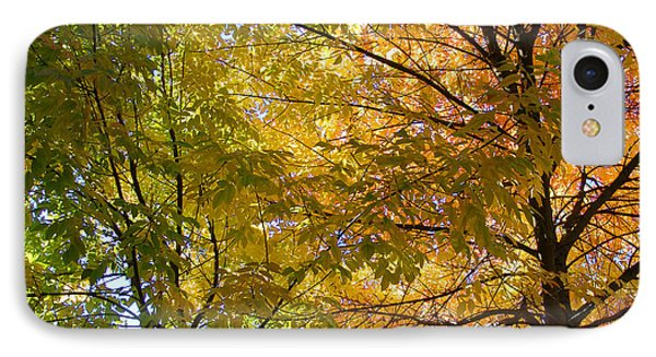 IPhone Case featuring the photograph Ashland Autumn by John Norman Stewart