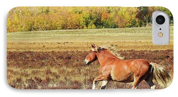 Aspen And Horsepower IPhone Case