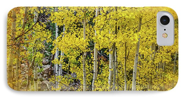 Aspen Autumn Burst IPhone Case by Bill Gallagher