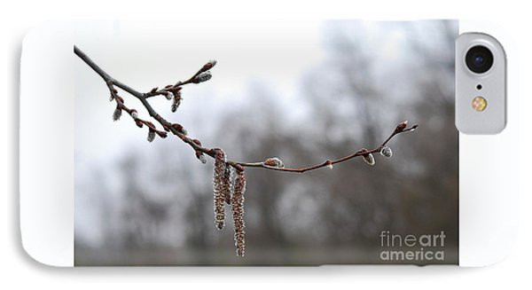 Aspen Catkins 20120316_15a IPhone Case by Tina Hopkins