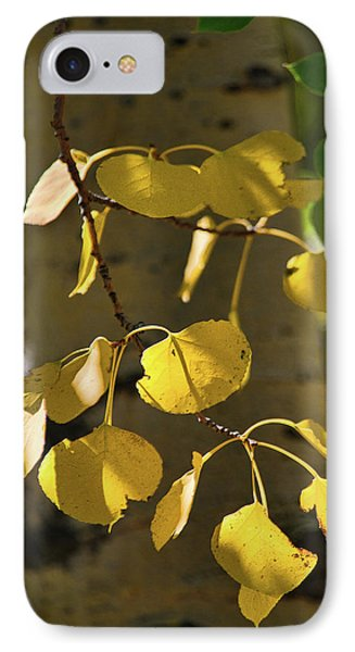 Aspen Closeup IPhone Case by Dana Sohr