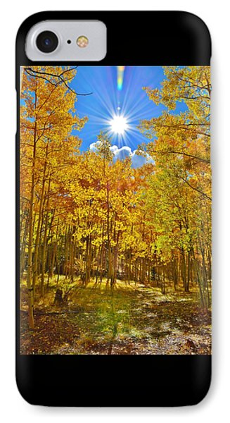 IPhone Case featuring the photograph Aspen Grove Aglow by Diane Alexander