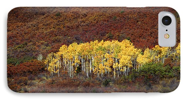 Aspen Grove Phone Case by Rich Franco