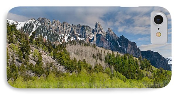 Aspen Grove Below The Ophir Needles IPhone Case