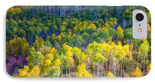 Aspen Hillside IPhone Case