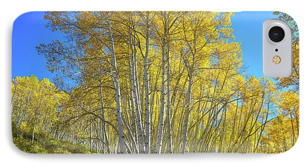IPhone Case featuring the photograph Aspen Lane by Ray Mathis