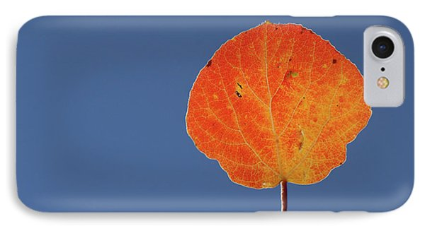 IPhone Case featuring the photograph Aspen Leaf 1 by Marie Leslie