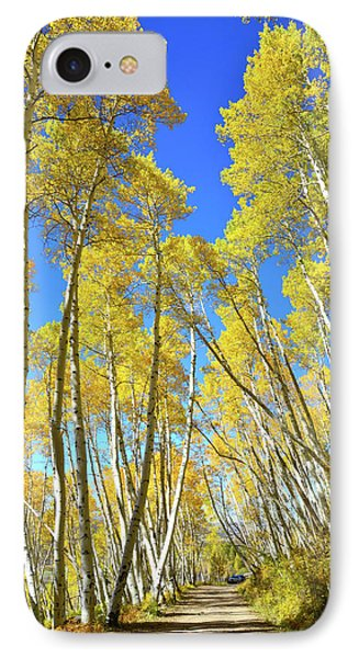 IPhone Case featuring the photograph Aspen Road by Ray Mathis