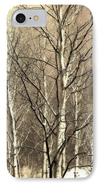 IPhone Case featuring the photograph Aspen Sky White Mountains Arizona by Donna Greene