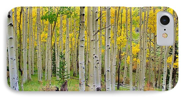 Aspen Slope IPhone Case by Ellen Heaverlo