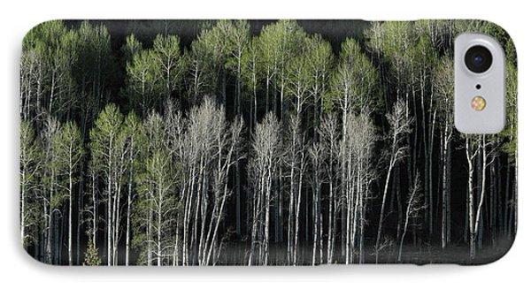 Aspen Spring IPhone Case
