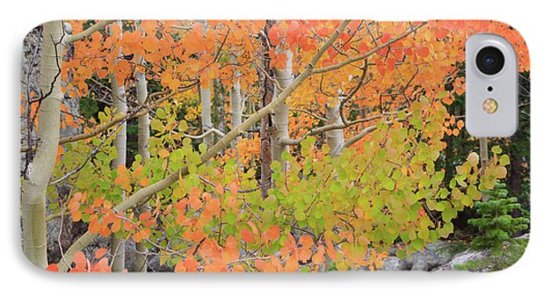 IPhone 7 Case featuring the photograph Aspen Stoplight by David Chandler