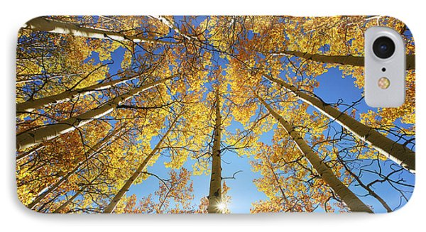 Aspen Tree Canopy 2 IPhone Case by Ron Dahlquist - Printscapes