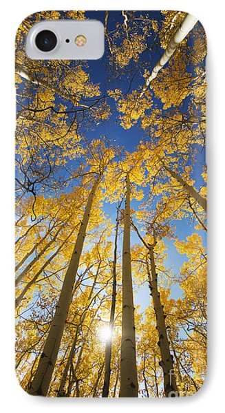Aspen Tree Canopy 3 Phone Case by Ron Dahlquist - Printscapes